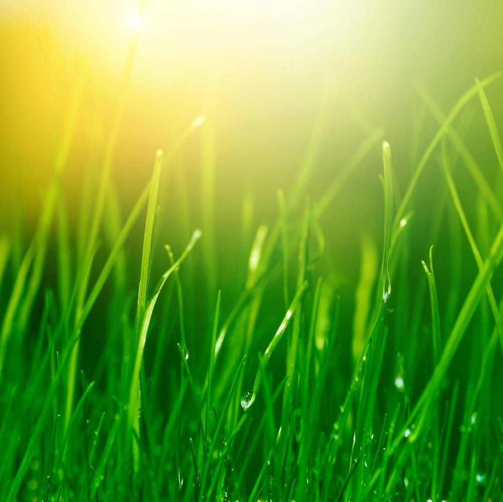 Aromatização para Ambiente  na Saúde - Aromatização de Ambiente Comercial