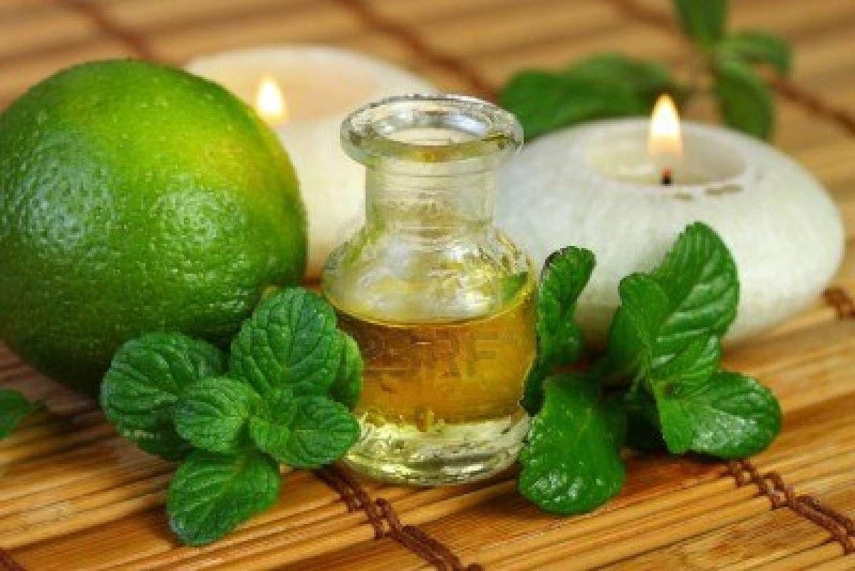 Aromatização para Eventos  em Interlagos - Empresas para Aromatização de Festa