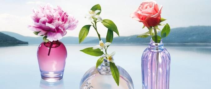 Empresas Aroma Marketing Valor  no Aeroporto - Marketing Aromas