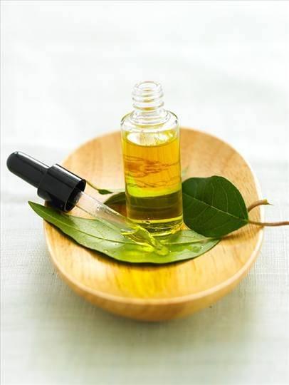 Serviço Aroma para Empresa  na Penha - Aroma Marketing