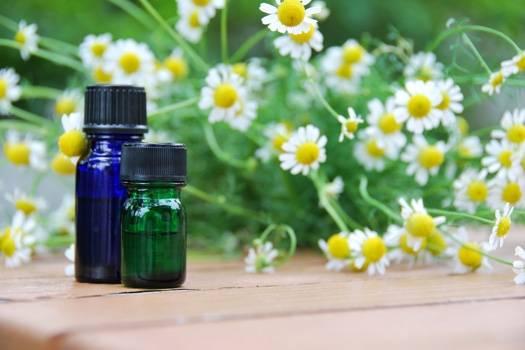 Serviços de Aromatização de Festas  no Itaim Bibi - Preço para Aromatização de Festas