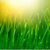 Aromatização para ambiente  na Saúde